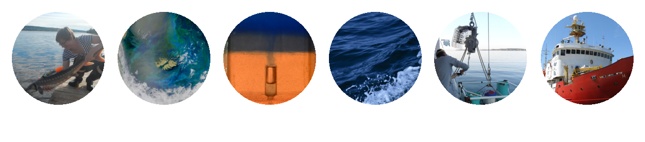 Current Tides